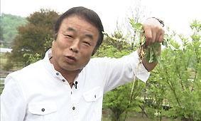 熟ファイ夏野菜